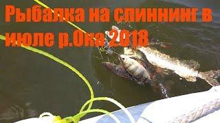 Рыбалка в коломне московской области