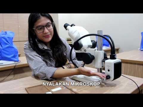 TUTORIAL PENGGUNAAN MIKROSKOP BINOKULAR - Geological Engineering, FTKE, Trisakkti University