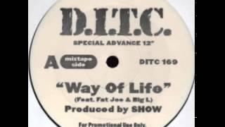 D.I.T.C. (Big L, Fat Joe) - Way Of Life (Show Prod. 1999)