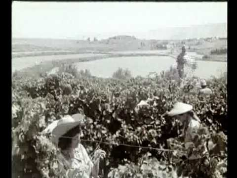 זה התחיל באום ג'וני - סרטון על המורשת המרתקת של דגניה, הקיבוץ הראשון בישראל