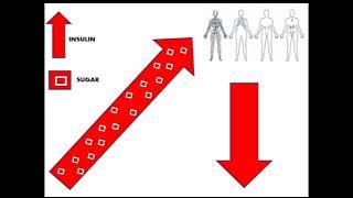 mqdefault Health Videos
