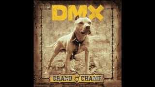 dmx we bout to blow