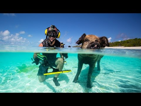 Searching For Treasure On Famous PIG BEACH!!! (metal detecting)