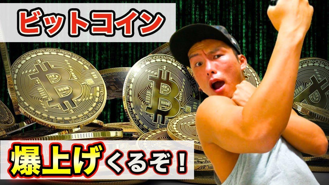 【全公開】ビットコインの投資額&戦略。(アルトコインの損切り額もw) #ビットコイン #仮想通貨 #BTC