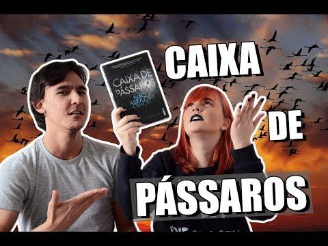BATE-PAPO: CAIXA DE PÁSSAROS | LIVRO + FILME