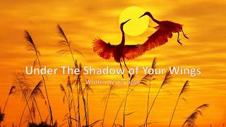Under The Shadow Of Your Wings by Zig Ziglar