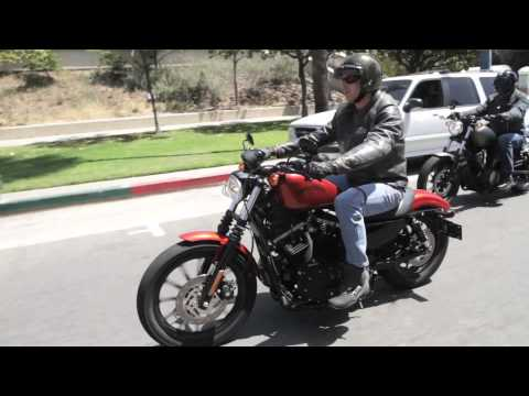 2014 Star Bolt vs 2013 Harley-Davidson 883 Iron