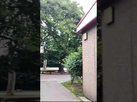 YouTube Video: INrzV3R-Xms