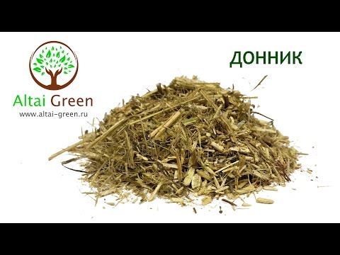 Донник трава - Чем полезен донник?