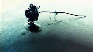 Evanescence Fallower for skyrim Special edition
