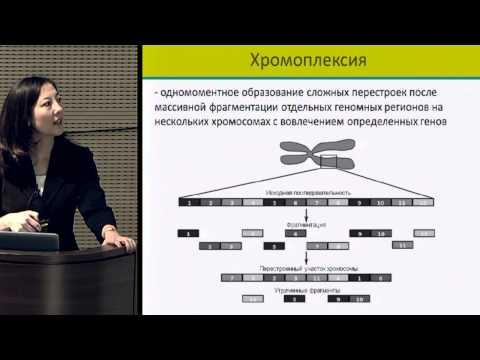 Эстроген гиперплазия предстательной железы