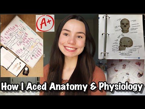 How I Aced Anatomy & Physiology | my study methods (Pre-Nursing)