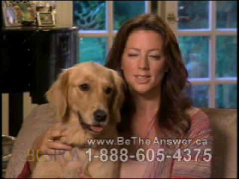 BCSPCA Commercial (2009 - 2010) (Television Commercial)
