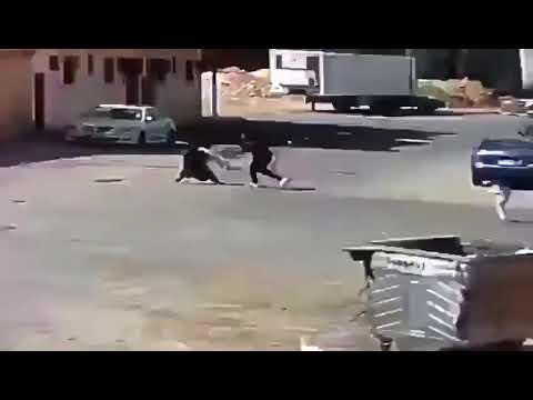 بالفيديو.. لص يفقد امرأة الوعي لسرقة حقيبتها !!