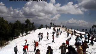 Best Shimla Tour Packages India