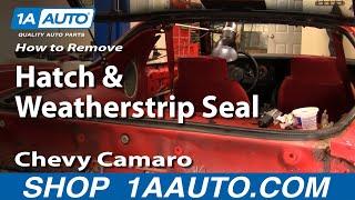 Remove Rear Hatch