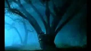 Hellraiser: Inferno (2000) Video