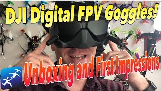 DJI Digital FPV Goggles System – Unboxing and First Looks