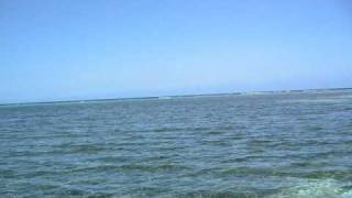preview picture of video 'Boat ride in Port Antonio Harbors and Navy Island'