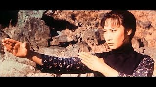 LADY WHIRLWIND  - Hong Kong martial arts film