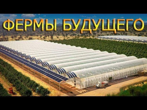 , title : 'Эволюция в сельском хозяйстве: Что нас ждет и что мы будем есть в ближайшем будущем