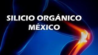 Silicio Orgánico México