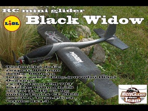 rc-glider-lidl-allias-black-widow