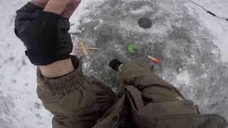 Как правильно варить икру для рыбалки