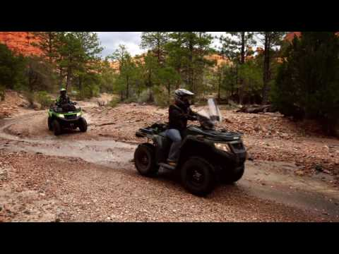 2017 Arctic Cat TBX 700 EPS in Hamburg, New York