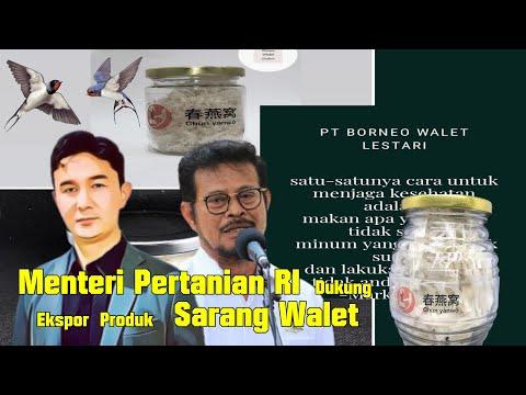 Video of Menteri Pertanian RI Dukung Ekspor Sarang Walet PT Borneo Walet Lestari