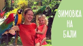 Зимовка на острове Бали: 5 причин интересно и недорого отдохнуть с ребенком | Family is...