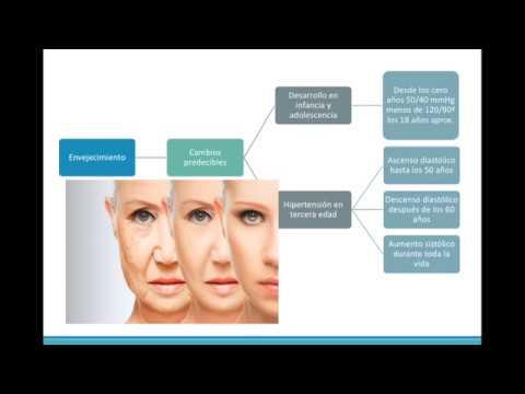 Inhibidores de la ECA tratamiento de la hipertensión