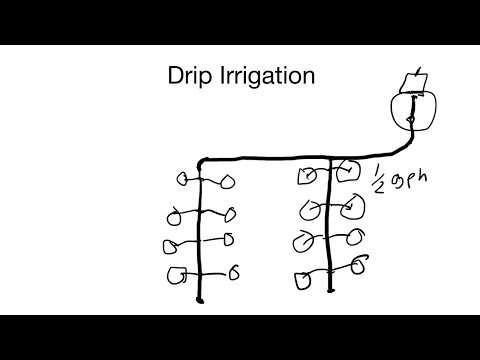 How to install a drip irrigation system, from design to implementation
