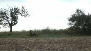 Video Indián
