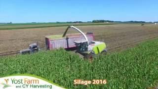 Yost Farm CY Harvesting Silage in 2016