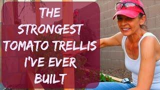 How To Stake & Tie Tomato Plants - Trellis Ideas For Strong Winds - Vegitable Garden Arizona