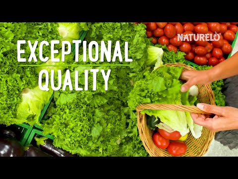 NATURELO, витаминD3, на растительной основе, 125мкг (5000МЕ), 180капсул, которые легко глотать