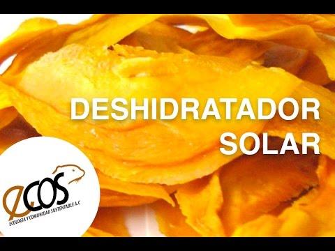 Dehydrator Food by Solar Energy