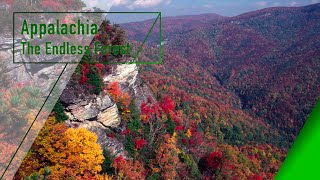 Appalachia - The Endless Forest - The Secrets of Nature