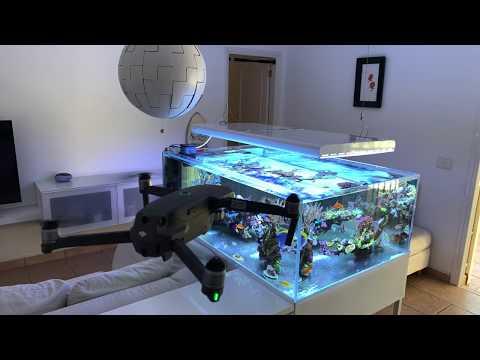 4K Drone DJI  - Reef Tank - Tenerife