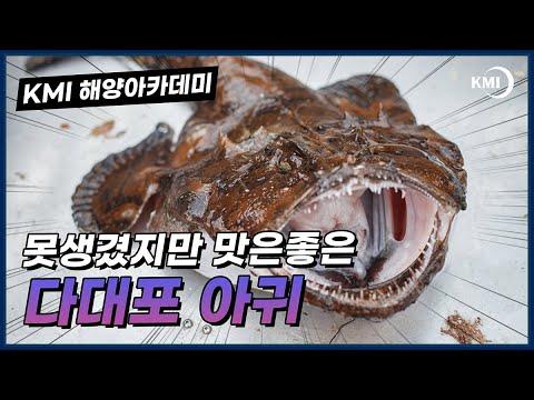 [바다맛] 부산 다대포 아귀 동영상표지