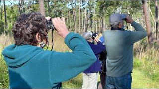 Hernando Audubon Society on Florida's Adventure Coast (2021)