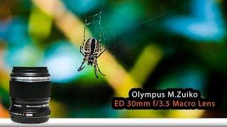 Olympus ED 30mm f3.5 Macro Lens   Filmmaking Today