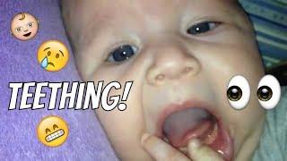 Firsts: Teething @ Three Months Old   LifeTagsLulu