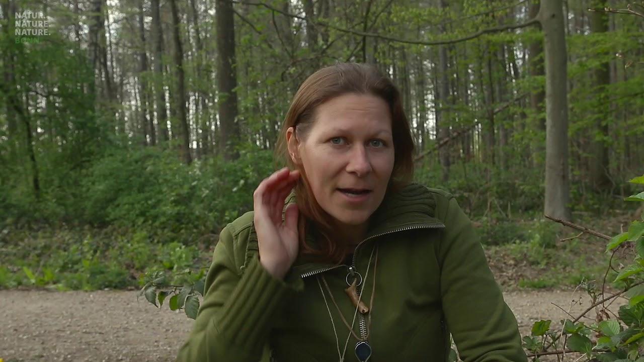Video: Umweltbildung am Haus der Natur: Kräuter
