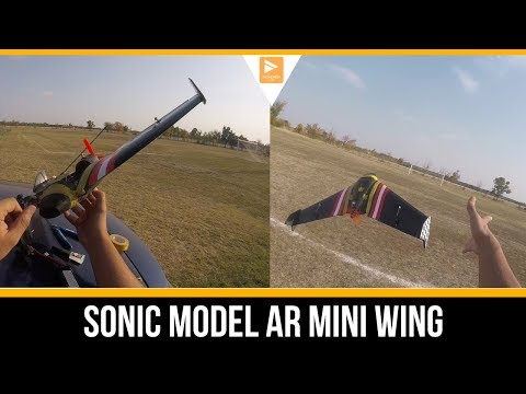 my-first-ever-wing--will-i-destroy-it--sonic-model-ar-mini-600m