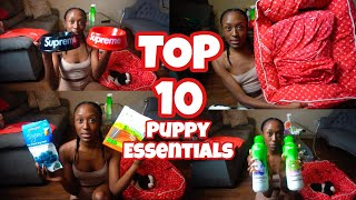 TOP 10 PUPPY ESSENTIALS HAUL|EXTREMELY HELPFUL|CAVALIER KING CHARLES SPANIEL EDITION|FEAT. SUPREME|