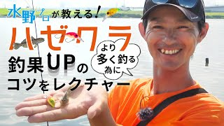 【釣果直結!ハゼクラ】水野プロが教える!ハゼクラの基本と応用テクニック
