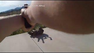 Deputy shoots and kills a family's dog on residential alarm call - LIVELEAK