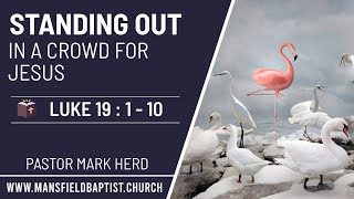 Luke 19 v 1-10: Standing out in a crowd